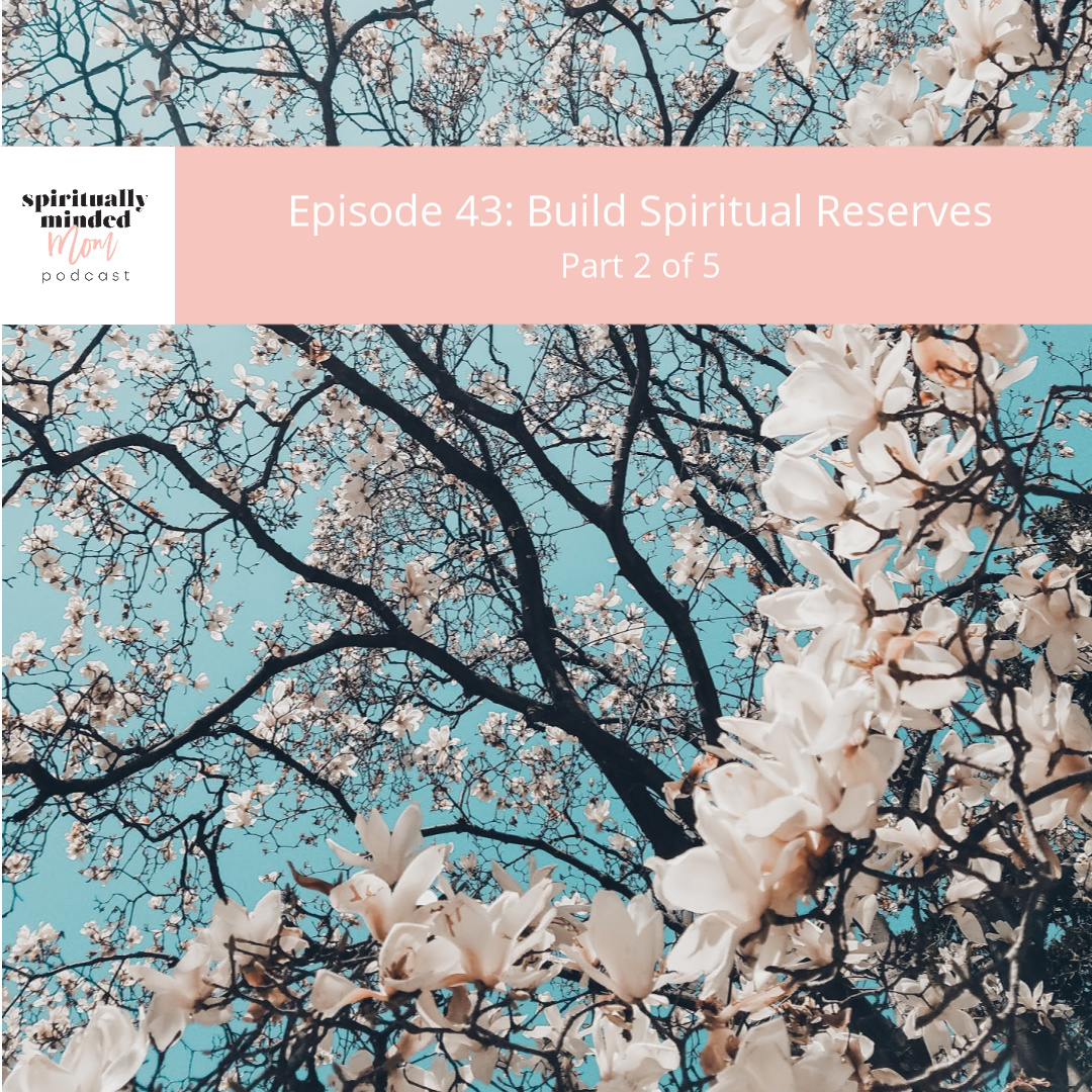 SMM 043: Build Spiritual Reserves || Part 2 of 5